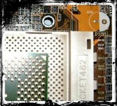 micro2.jpg
