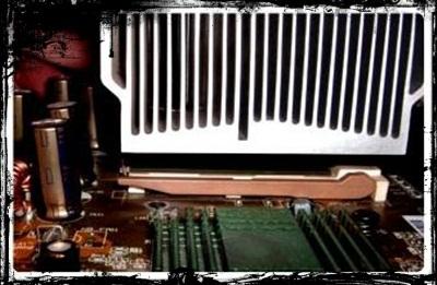 micro7.jpg